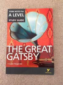 The great gatsby A level revision guide