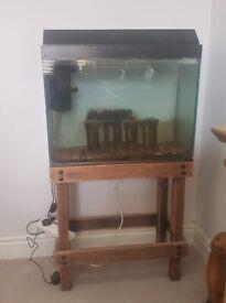100ltr fish tank