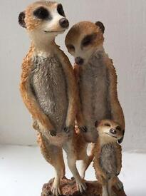 Meerkat morning sun by country artist Prefer collection Leeds Make a lovely gift