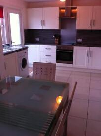 Lovely 3 bedroom house for rent in Hamilton £600pcm - available to view from 10th June