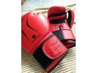 Beginner's 10oz Boxing Gloves