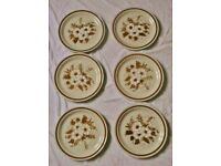 6 Brown New Mountain Wood Collection Oven to Table Stoneware Dinner Plates Dried Flowers Floral