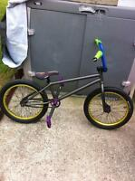2011 WTP Justice custom - Price just dropped!
