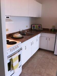 Beautiful Bright Spacious 1 bedroom apartment available