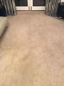 Carpet Only 9 Months Old