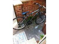 Men's Apollo bike