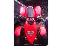 Pro shark 100cc quad needs top end