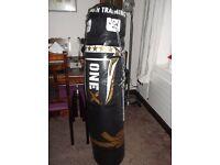 Punch/ Kick Boxing Bag