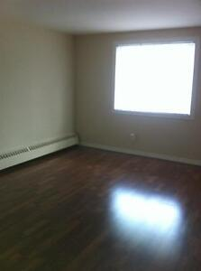 Bachlor apartment $600 inclusive on Tecumseh!