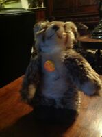 VINTAGE STEIFF  RACOON   6205/30 WITH TAG AND  RARE CHEST TAG