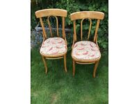 Pair of antique French early 1900s bentwood chairs