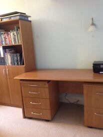 Office cupboard with bookcase