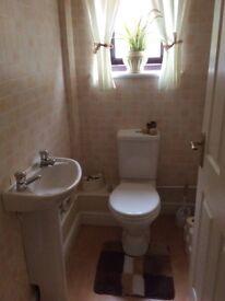 Toilet & sink unit