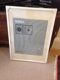 Ikea Ribba Frame 50cm X 70cm