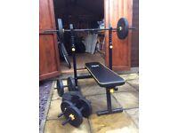 Everlast weight bench & 50kg weights