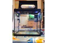 25L Heated Fishtank