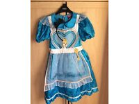 Disney Alice in Wonderland Dress Up Outfit