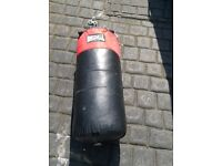 Punchbag and gloves