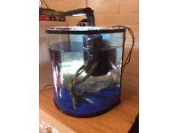 Fish tank tetra 60l Aqua explora