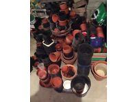 Plant pots and seed trays all sizes and shapes