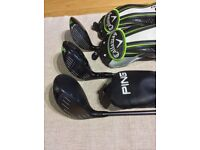 Ping G 3 wood, Callaway GBB Epic Heaven and Divine Nine woods