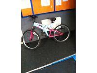 Mountain bike 15 speed