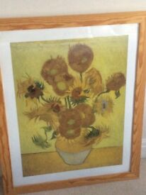 Large Framed Picture of Van Goughs Sunflowers