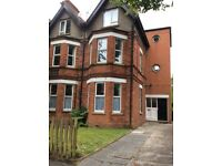 Large two bedroom flat in South Belfast, Knockbreda Road.