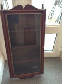 Display cabinet for wall