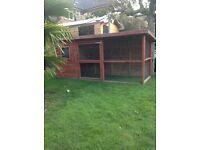 Rabbit hutch/chicken coop/cat/dog house