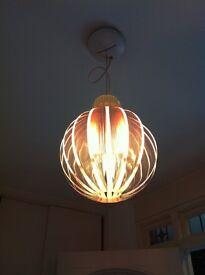 Designer 'Luceplan Agave' light pendant