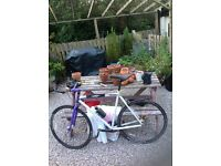 Mongoose- Fixed gear bike - £50 no offers