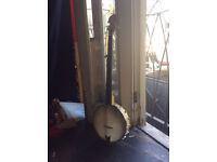 GOLD TONE 5 String Banjo (USA/Open Back /Maple Rim) CC-100 model