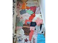Baby girl bundle 9-12 months