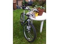 Nearly-new mountain bike + double lock worth over £30