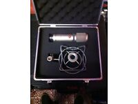 sE 2200a Microphone with Shock-mount and Hardcase