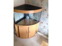 Juwel Trigon 190 Ltr Corner Fish Tank Aquarium (Thatcham not Reading)