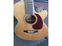 Hudson Fire Fly Electric Acoustic Guitar - Make a fair offer!