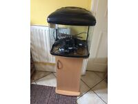 Good condition, two fish tanks, largest holds 60 ltr