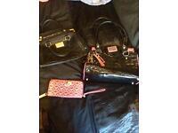 Lipsy bags/purse £8-£10