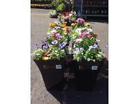 Fill plant pots