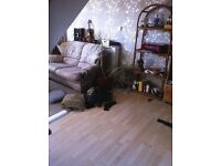 2 Bed Council Flat in Redcliffe looking to exchange for 1 or 2 bed flat elsewhere in/near Bristol
