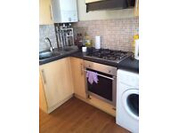 1 BEDROOM GROUND FLOOR FLAT TO RENT IN ROATH FULL FURNISHED NO AGENCY FEE DSS CONSIDERED
