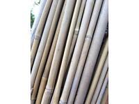 Bamboo Garden Canes 6ft