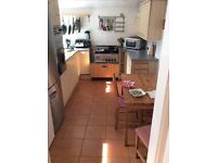 Beautiful double bedroom in luxury clean house - NO BILLS FREE WIFI close to shops and transport