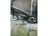 salt stunt bmx bike for sale