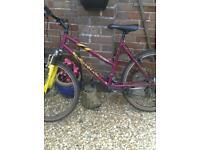 Large ladies mountain bike