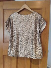 Coast Sequince Top size 14