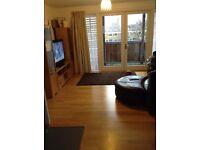 Beautiful 2/3 bedroom apartmnet