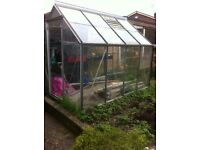 8ft x6ft greenhouse
